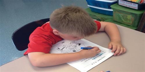 Student Working on Reading